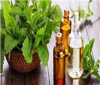 «زيت النعناع».. علاج فعال لجميع أنواع الشعر