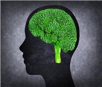 أفضل 5 أطعمة للحفاظ على صحة العقل