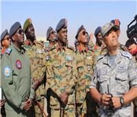 رزق: العلاقات المصرية السودانية خاصة وتاريخية