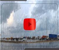 فيديوجراف| نصائح القيادة الآمنة في الأمطار والشبورة