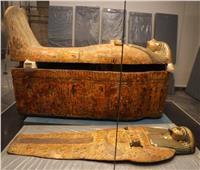 شاهد | مومياوات كهنة وكاهنات المعبود آمون في متحف العاصمة الإدارية