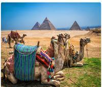 «أم الدنيا»..«صحيفة أمريكية» تشجع على عودة السياحة بمصر في زمن الكورونا