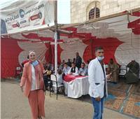 حضور كبير لأهالي وادي الريان والسواقي بالفيوم في انتخابات «النواب»
