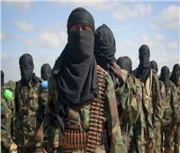 «الظواهري ودروكال».. خسائر الجماعات الإرهابية لا تتوقف