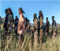 مجلس الأمن يعقد أول اجتماع حول النزاع الإثيوبي في تيغراي
