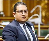 برلماني: كلمة الرئيس حول تداعيات «كورونا» رسالة طمأنة