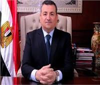 أسامة هيكل يؤكد أهمية تطوير العلاقات الإعلامية والثقافية بين مصر واليابان