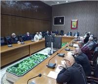 «الدائمة للاستثمار» توافق على إقامة 3 مشروعات في سيناء