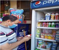 إعدام طن مواد غذائية وغلق 12 منشأة بالشرقية