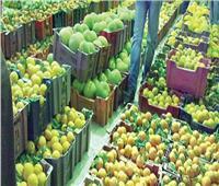 الزراعة: ارتفاع صادرات مصر لـ 4.8 مليون طن