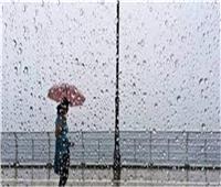 «الكهرباء» تحافظ على منشآتها من الأمطار بـ10 خطوات