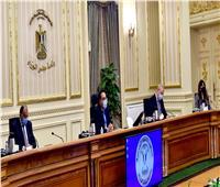 «مدبولي» يستعرض نتائج تقييم الاتفاقيات التجارية الدولية المنضمة لها مصر