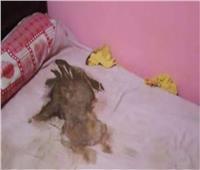 بعد تحول القضية لقتل خطأ.. التفاصيل الكاملة لواقعة «طفل طوخ» الميت جوعًا