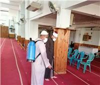 «تعقيم وتطهير»| المساجد تستعد لصلاة الجمعة في ظل كورونا.. صور