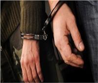 حبس سائق «الميني باص» المتسبب في مصرع 4 أشخاص في البدرشين