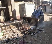 حملات نظافة وتمهيد الطرق بقرى مركز ملوي في المنيا
