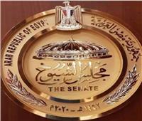 ننشر مشروع قانون لائحة «الشيوخ» قبل عرضه بالجلسة العامة 