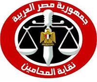 «المحامين» تناقش مستجدات إنشاء «أكاديمية المحاماة» ..غدا الأحد