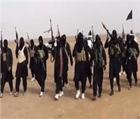 استكمال محاكمة 12 متهمًا بالانضمام لجماعة إرهابية غدًا