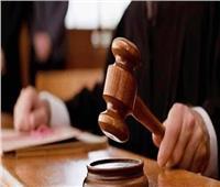 تأجيل استئناف رئيس شركة مياه غازية على حبسه في «التهرب الضريبي»