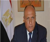 شكري لـ«قيادات الخارجية»: مواصلة العمل الدؤوب للدفاع عن المصالح المصرية