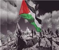 من «صعيدي» لـ«ولاد العم».. أعمال سينمائية دعمت القضية الفلسطينية