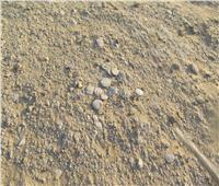 «قروش الملك».. صخور تشبه العملات القديمة في محمية وادي الريان  صور