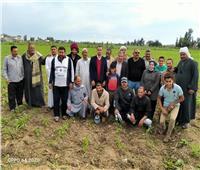 «الزراعة» تنفذ 25 مدرسة حقلية في 8 محافظات