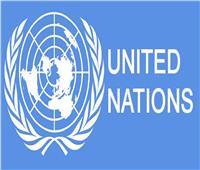 برنامج الأمم المتحدة للمتطوعين في مصر ينظم احتفالية بجهود مكافحة كورونا
