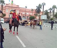 «السياحة والآثار» تكشف حقيقة تحديد موعد نقل المومياوات الملكية