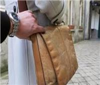 حبس عاطلين لاتهامهما بسرقة حقائب السيدات في المرج