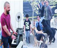مصري ينظم أول حفل موسيقي للكلاب