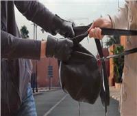 ضبط عصابة تقوم بخطف حقائب النساء بالغربية