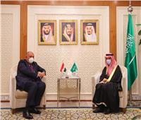 مصر والسعودية تؤكدان ضرورة الحفاظ على استقرار ليبيا