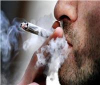 عقوبة تعاطى المخدرات أثناء القيادة وفقا للقانون الجديد تعرف عليها