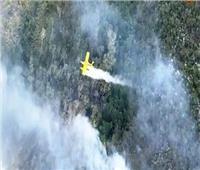 حرائق الغابات تلتهم نصف مساحة أكبر جزيرة رملية في العالم