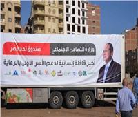 صندوق تحيا مصر يحتفل بتسجيله في موسوعة جينيس.. الجمعة