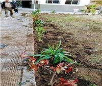 انطلاق حملة للنظافة والتجميل بحي شرق سوهاج