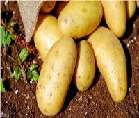 زي النهاردة  بحار إنجليزي يكتشف البطاطس