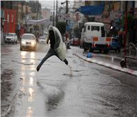 «الأرصاد»: استقرار حالة الطقس حتى هذا الموعد.. فيديو