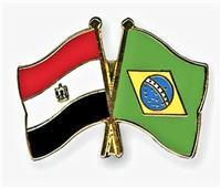 ندوة افتراضية حول الفرص التجارية لصادرات الكيماويات للبرازيل