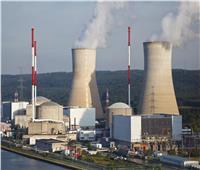 %20 مكونات محلية في المحطة النووية الأولى و35% بالثانية