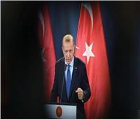 خبير بالشأن التركي: ملف حقوق الإنسان في عهد أردوغان هو الأسوأ| فيديو