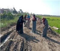 «صيادات كفر الشيخ» يحلمن بـ«نظرة» التضامن الاجتماعي| فيديو وصور