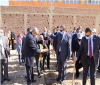 سعفان يشارك طلاب جامعة الأقصر زراعة شجرة في إطار مبادرة «هنجملها»
