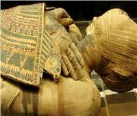 نكشف حقيقة إصابة المصريين القدماء بالسرطان .. وقصة سمكة برأس بقرة