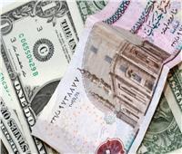 ختام التعاملات| استقرار سعر الدولار أمام الجنيه في البنوك