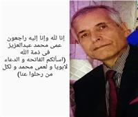 وفاة شقيق النجم محمود عبد العزيز