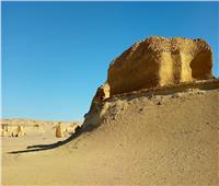 وزيرة البيئة: «وادي الحيتان» أحد مواقع التراث العالمي الجيولوجي في مصر