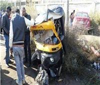 حوادث المنيا  إصابة ووفاة 18 شخصا.. و5 أطفال يعقرهم كلب
